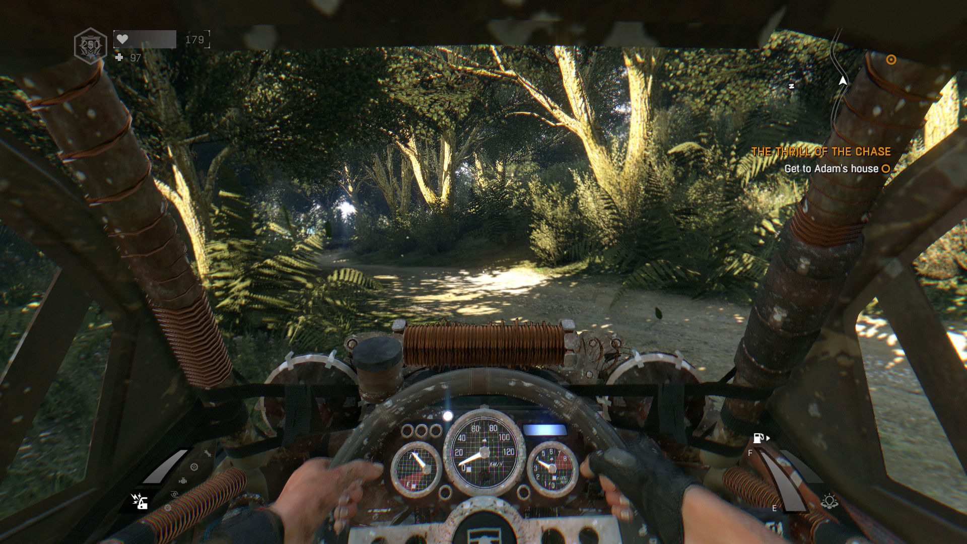 Driving a buggy through a country road